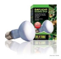 Exo Terra Reptile Daylight Basking spot Bulb 75W Genuine Replacement Lamp